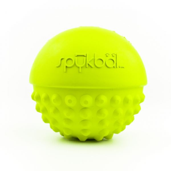 Petprojekt™ Spykbal