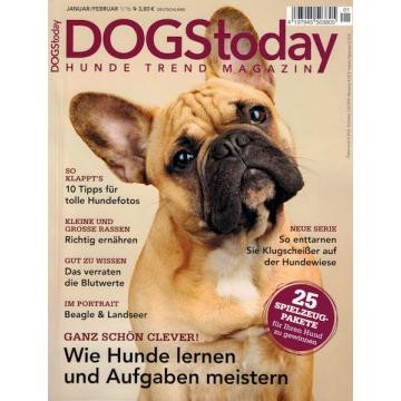 dogstoday_jan16