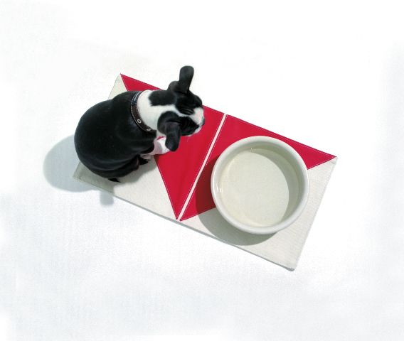 Wagwear Canvas Placemat (in 6 verschiedenen Farben erhältlich)