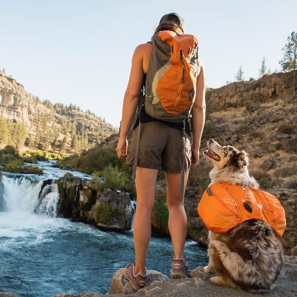 outdoor-aktivitaeten-mit-ihrem-hund